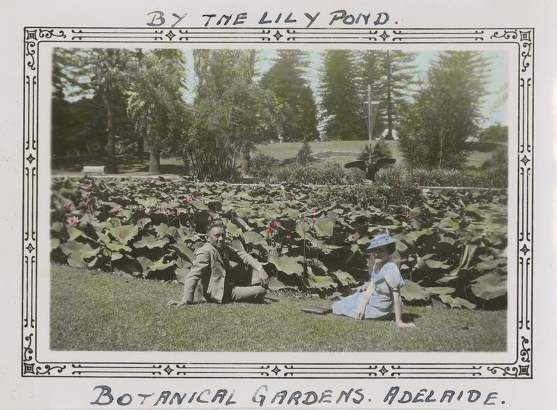 Lily pond, 1939