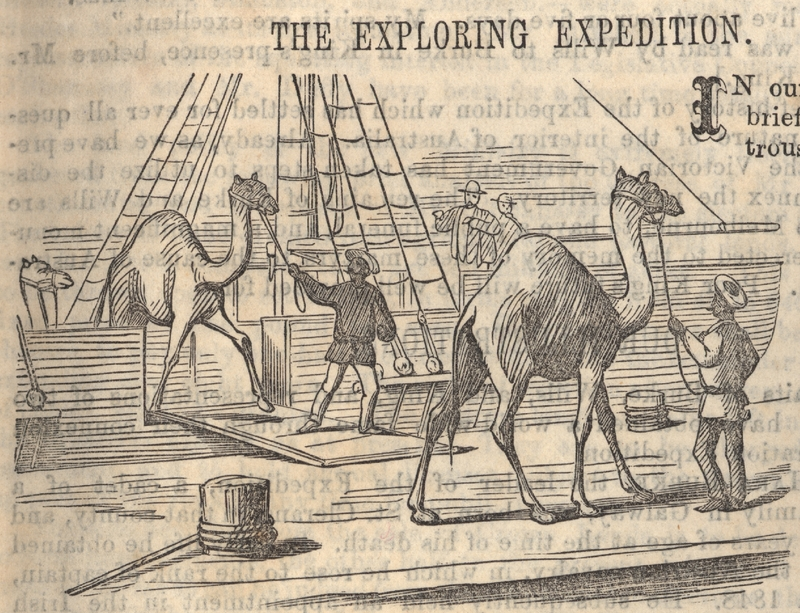 """Camels disembarking"", Herald Office, 1861"