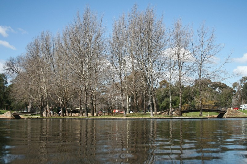 Rymill Park, 2008