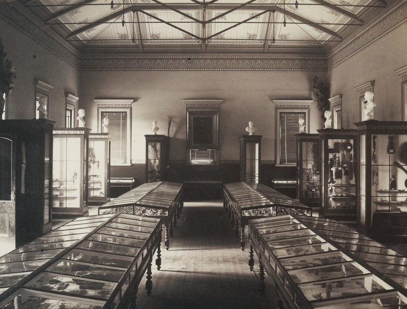 Museum of Economic Botany, 1881