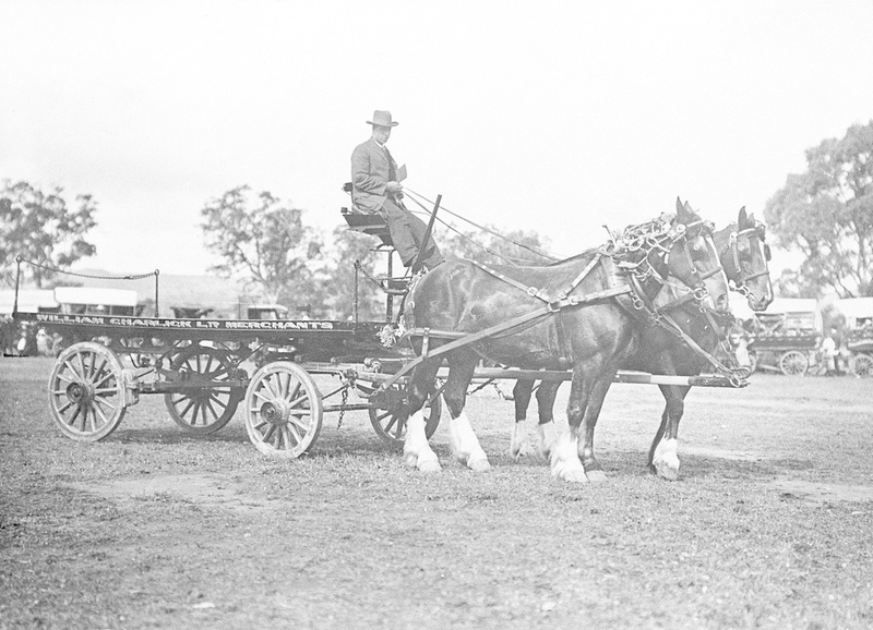 A horse and cart belonging to fruit and produce merchant, William Charlick Ltd, 1919