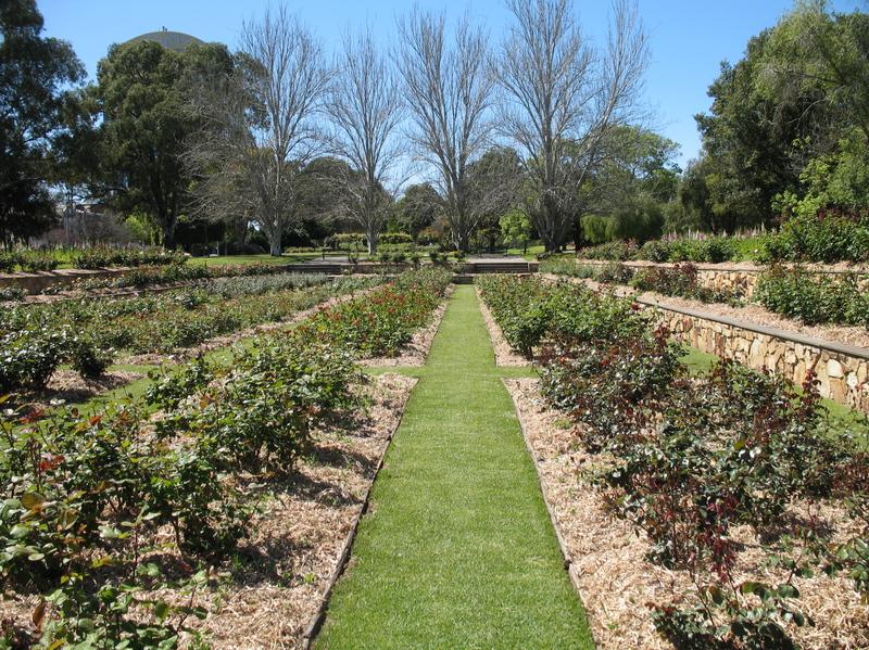 Veale Gardens, 2006